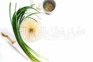 PLSP #366 Styled Desktop Stock Photo