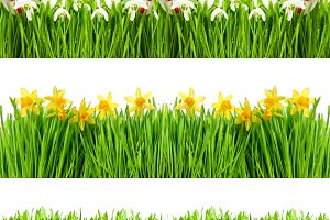 Spring flowers Floral banner