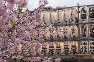 April in Tokyo