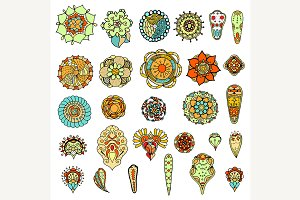 set of flowers. Illustration
