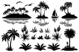 Tropical palms and exotic objects