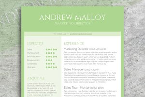 Fresh Mint CV Template