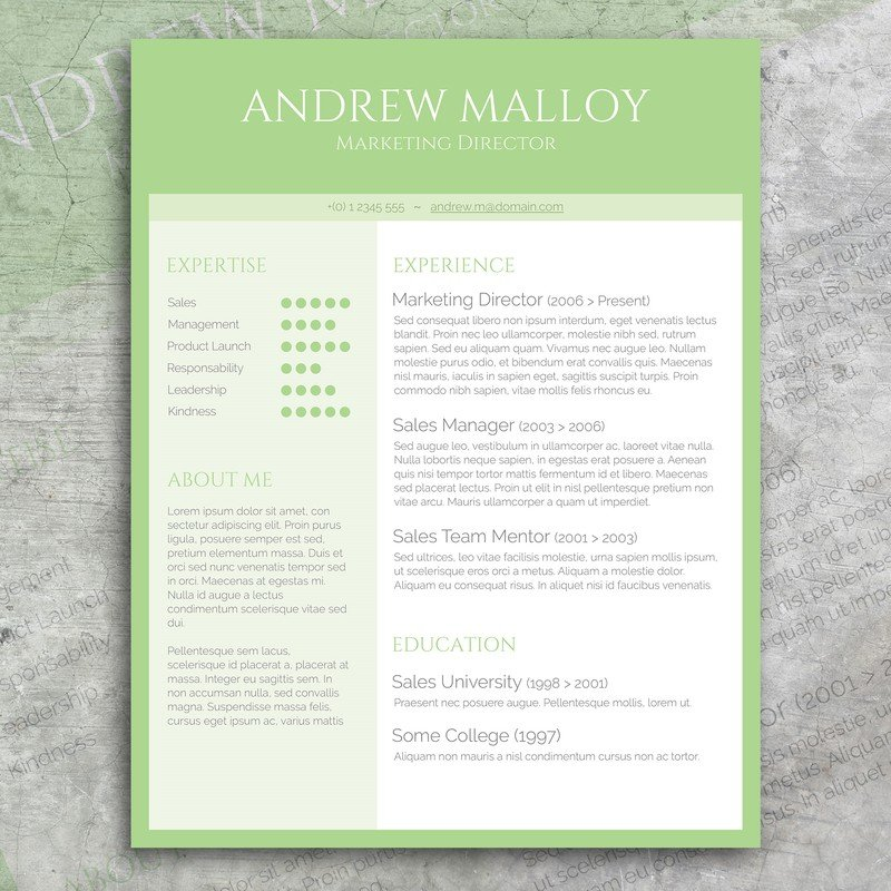 fresh mint cv template resume templates creative market