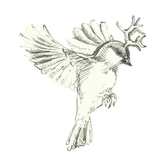 Birds in watercolor and pencil in Illustrations - product preview 7