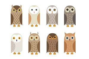 Cute flat owls set