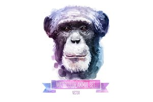 Watercolor set of animals | Monkey
