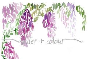 watercolor wisteria border