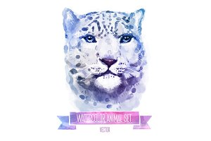 Watercolor set of animals | Leopard