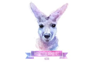 Watercolor set of animals | Kangaroo