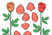 Set sketch red rose. Flowers rose