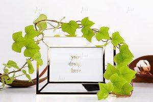Ivy plany frame mockup ♥