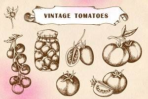Set of vintage tomatoes