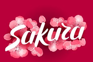 Japanese sakura backgrounds.