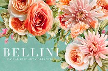 Bellini Floral Clip Art Collection by  in Graphics