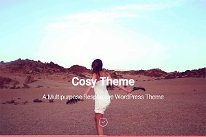Cosy - Multipurpose WordPress Theme