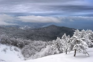 Crimea in the winter