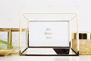 Glass Terrarium frame mockup