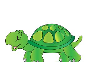 turtle, Vector, illustration