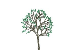 tree, sketch, vector