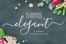 by  in Fonts