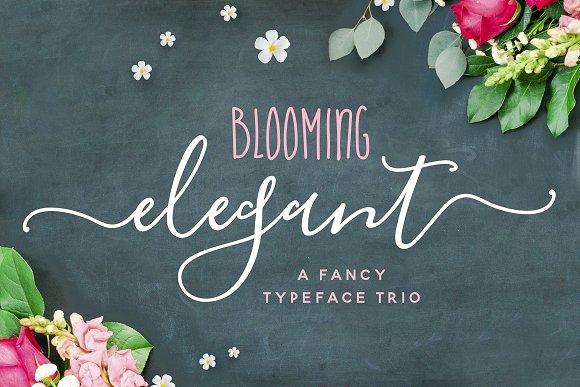The Blooming Elegant Font Trio Script Fonts Creative